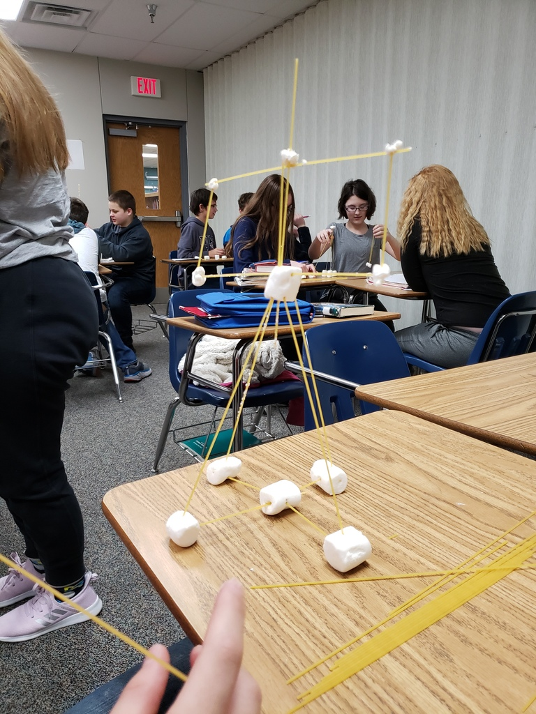 Students had to try build the tallest structure.
